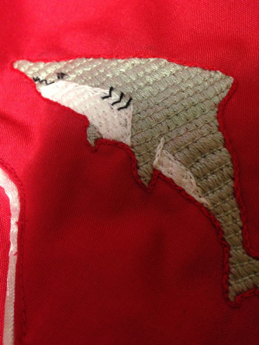 shark-detail