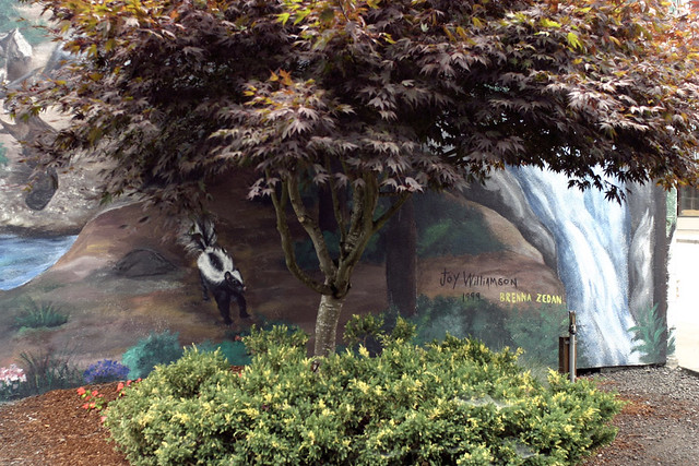 "The corner of a mural wall, with an actual tree and shrub in front of a painted woodland mural showing a skunk. Two signatures in the corner read ""Joy Williamson, Brenna Zedan, 1999."""